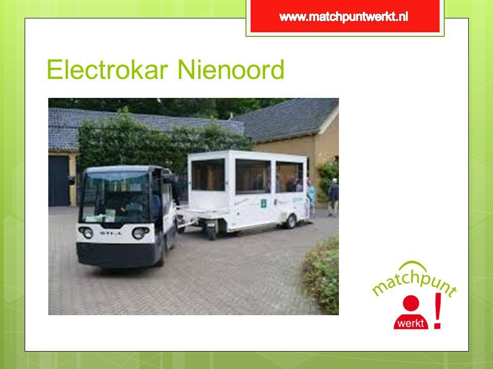 Electrokar Nienoord
