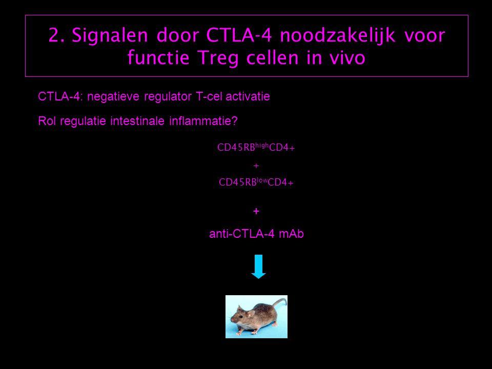 2. Signalen door CTLA-4 noodzakelijk voor functie Treg cellen in vivo CTLA-4: negatieve regulator T-cel activatie CD45RB high CD4+ + CD45RB low CD4+ +
