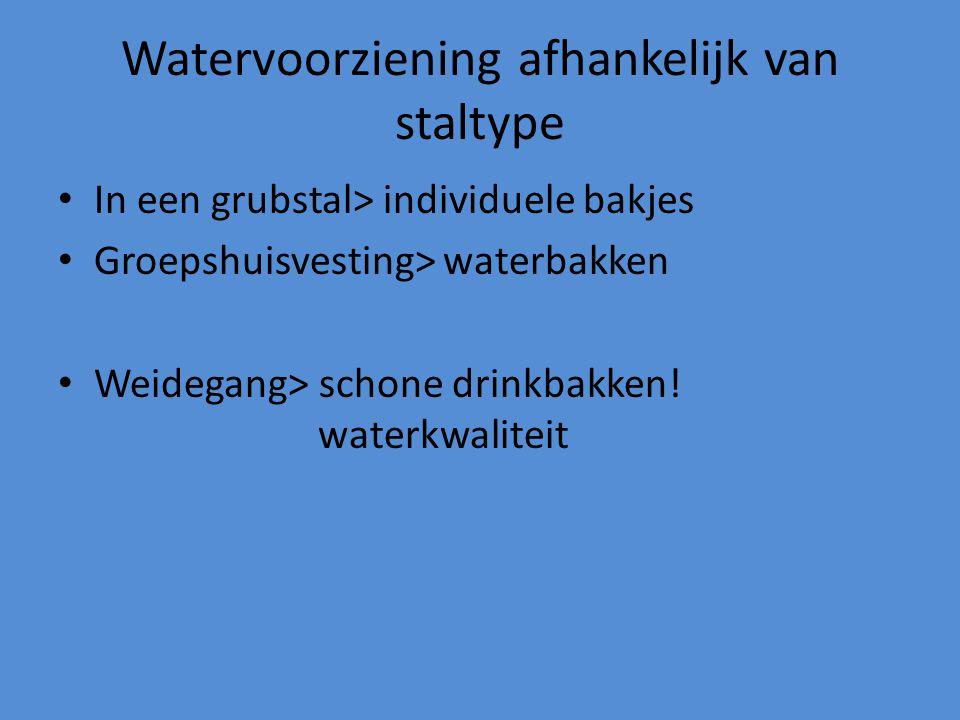 Watervoorziening afhankelijk van staltype In een grubstal> individuele bakjes Groepshuisvesting> waterbakken Weidegang> schone drinkbakken! waterkwali