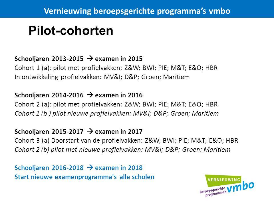 Pilot-cohorten Schooljaren 2013-2015  examen in 2015 Cohort 1 (a): pilot met profielvakken: Z&W; BWI; PIE; M&T; E&O; HBR In ontwikkeling profielvakken: MV&I; D&P; Groen; Maritiem Schooljaren 2014-2016  examen in 2016 Cohort 2 (a): pilot met profielvakken: Z&W; BWI; PIE; M&T; E&O; HBR Cohort 1 (b ) pilot nieuwe profielvakken: MV&I; D&P; Groen; Maritiem Schooljaren 2015-2017  examen in 2017 Cohort 3 (a) Doorstart van de profielvakken: Z&W; BWI; PIE; M&T; E&O; HBR Cohort 2 (b) pilot met nieuwe profielvakken: MV&I; D&P; Groen; Maritiem Schooljaren 2016-2018  examen in 2018 Start nieuwe examenprogramma s alle scholen Vernieuwing beroepsgerichte programma's vmbo