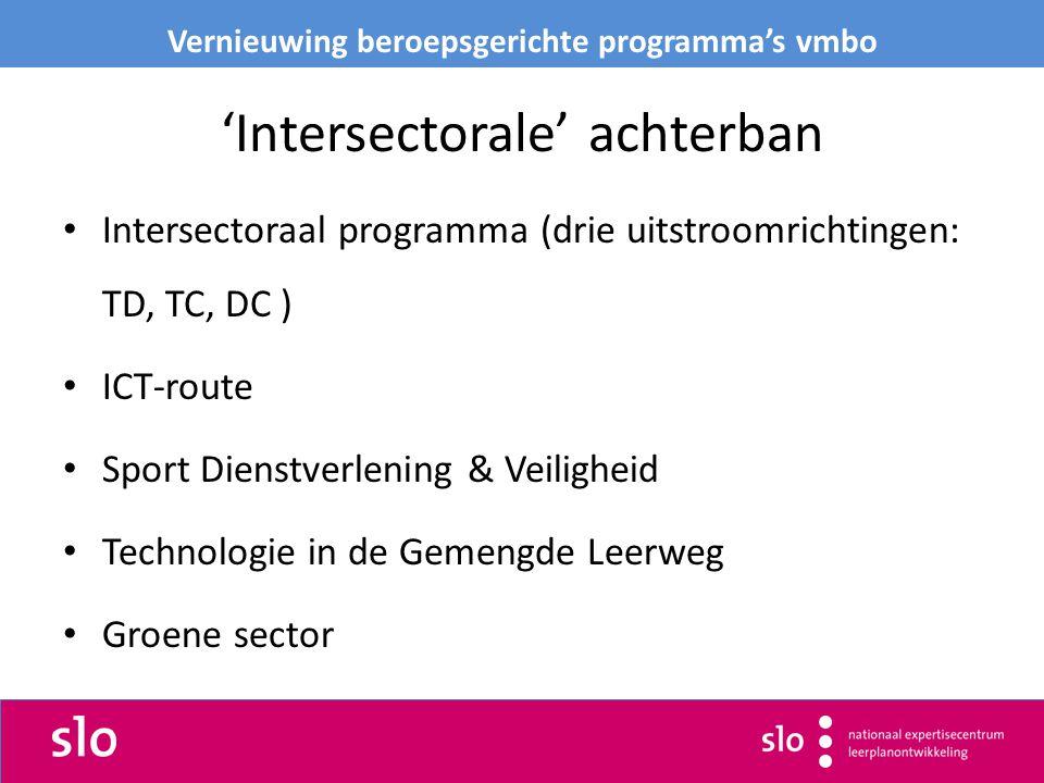 'Intersectorale' achterban Intersectoraal programma (drie uitstroomrichtingen: TD, TC, DC ) ICT-route Sport Dienstverlening & Veiligheid Technologie in de Gemengde Leerweg Groene sector Vernieuwing beroepsgerichte programma's vmbo