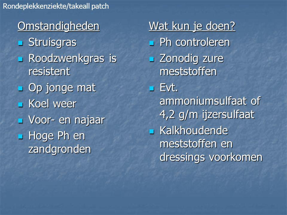 Omstandigheden Struisgras Struisgras Roodzwenkgras is resistent Roodzwenkgras is resistent Op jonge mat Op jonge mat Koel weer Koel weer Voor- en najaar Voor- en najaar Hoge Ph en zandgronden Hoge Ph en zandgronden Wat kun je doen.