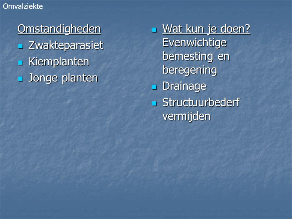 Omstandigheden Zwakteparasiet Zwakteparasiet Kiemplanten Kiemplanten Jonge planten Jonge planten Wat kun je doen.