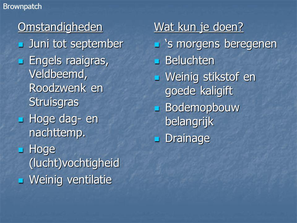 Omstandigheden Juni tot september Juni tot september Engels raaigras, Veldbeemd, Roodzwenk en Struisgras Engels raaigras, Veldbeemd, Roodzwenk en Struisgras Hoge dag- en nachttemp.