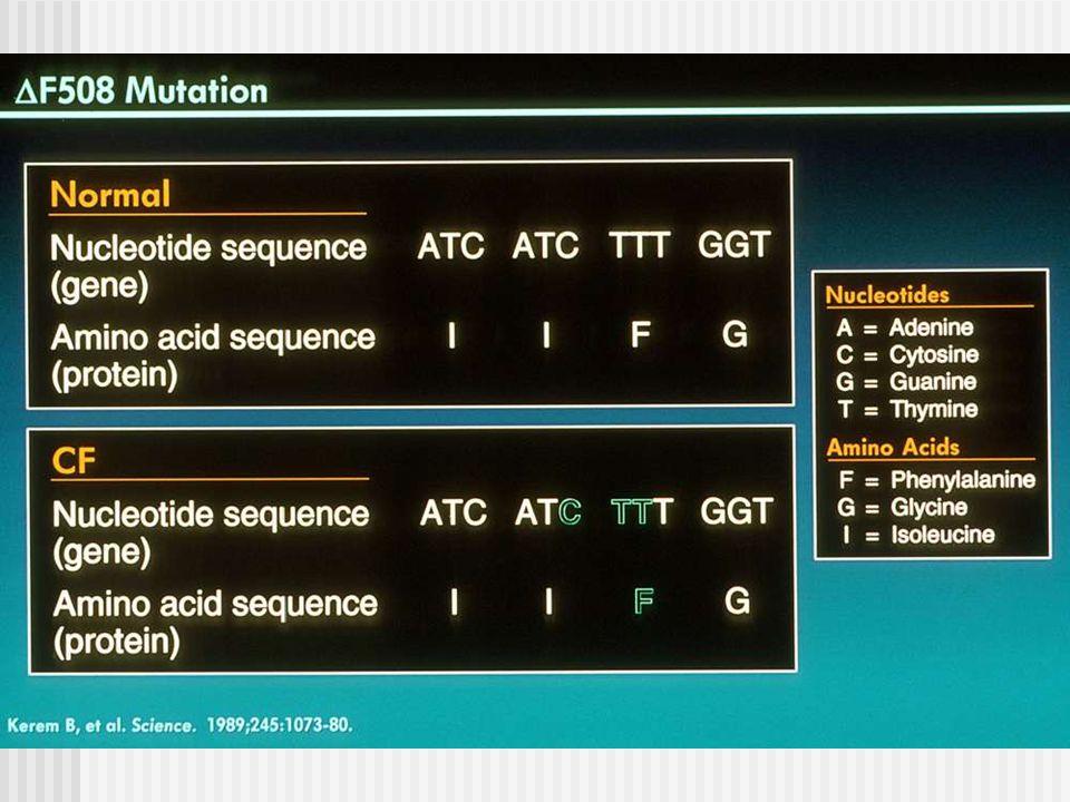 Karakteristieken van baby's met R117H-7T mutatie