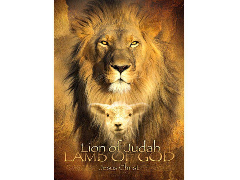 Openb.4: Ik, Johannes, had een visioen. Er stond een deur open in de hemel.