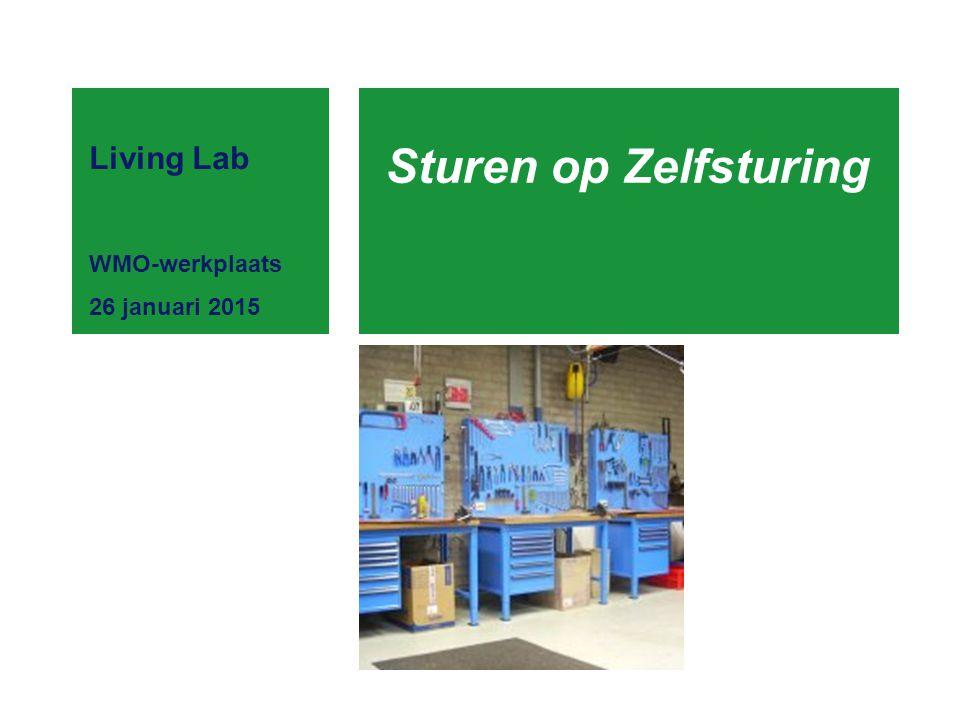 Sturen op Zelfsturing Living Lab WMO-werkplaats 26 januari 2015