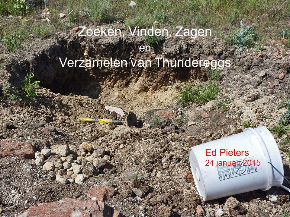 www.mineraalverzamelen.nl 24 januari 2015 Eddy Bed