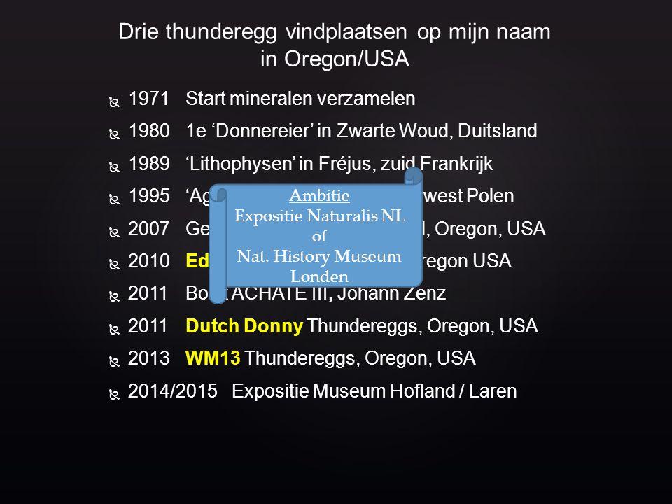 Dutch Donny (2011) WM 13 (2013) Eddy Bed (2010) Enkele vondsten