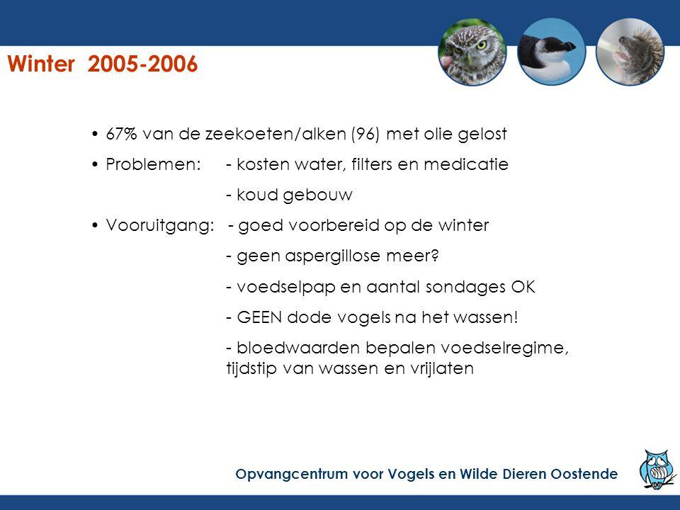 Winter 2005-2006 67% van de zeekoeten/alken (96) met olie gelost Problemen:- kosten water, filters en medicatie - koud gebouw Vooruitgang: - goed voor