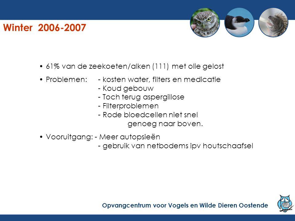 Winter 2006-2007 61% van de zeekoeten/alken (111) met olie gelost Problemen:- kosten water, filters en medicatie - Koud gebouw - Toch terug aspergillo