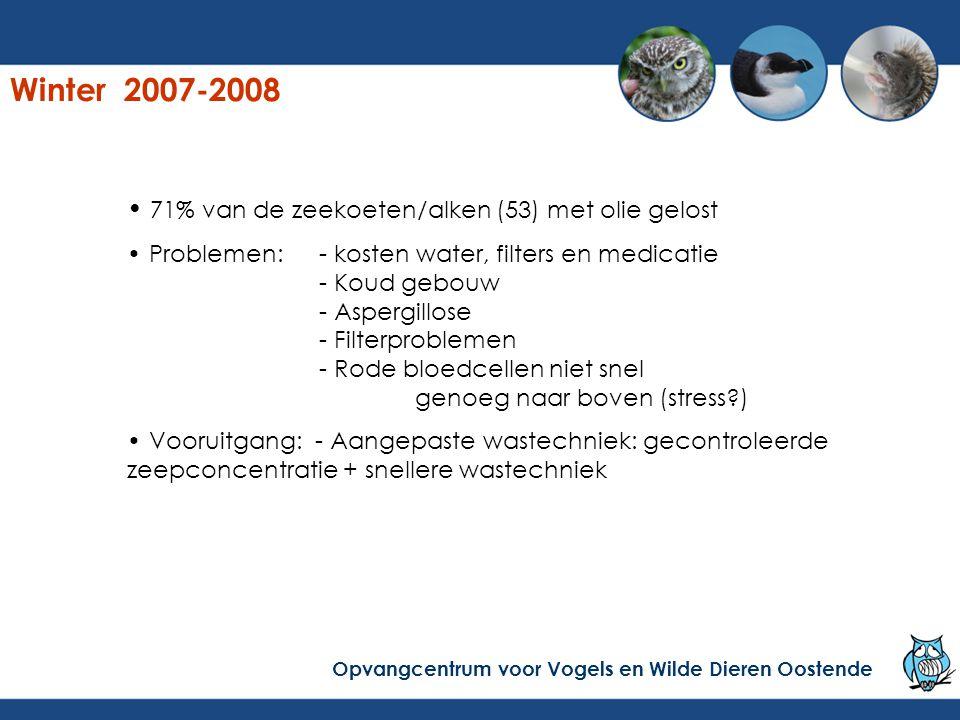 Winter 2007-2008 71% van de zeekoeten/alken (53) met olie gelost Problemen:- kosten water, filters en medicatie - Koud gebouw - Aspergillose - Filterp