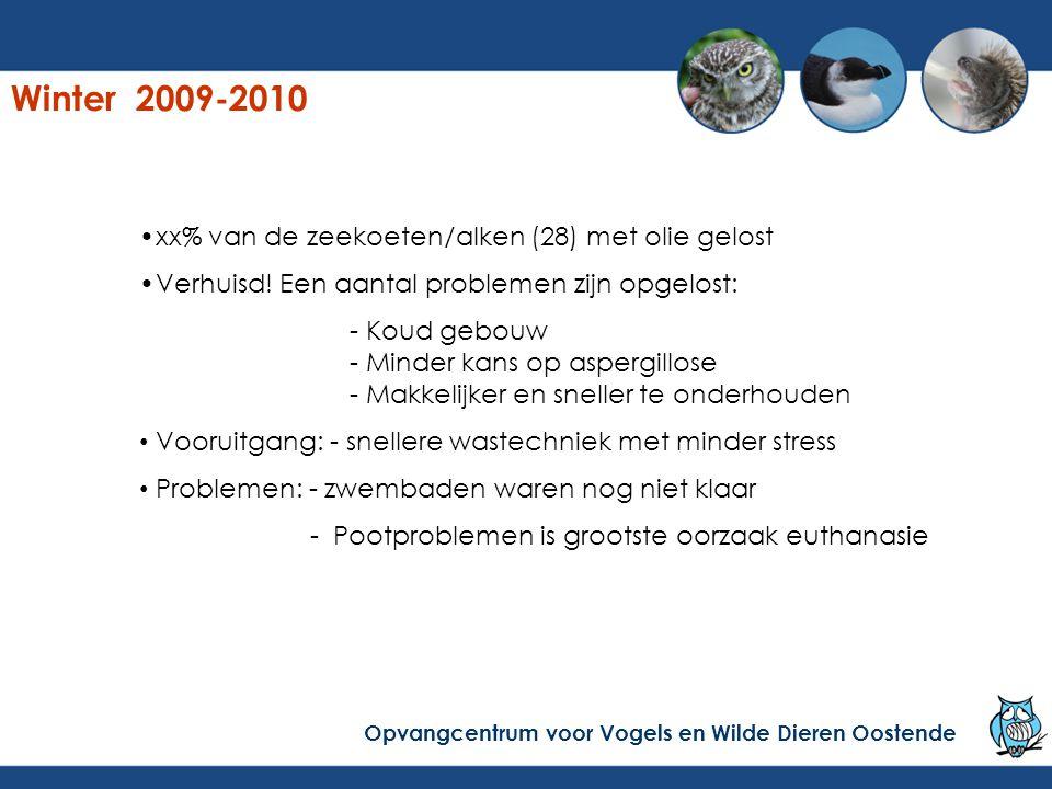 Winter 2009-2010 xx% van de zeekoeten/alken (28) met olie gelost Verhuisd! Een aantal problemen zijn opgelost: - Koud gebouw - Minder kans op aspergil