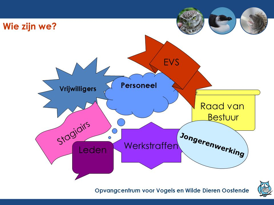 Stijging sinds 2000, terug stijging in 2009 en 2010 Opvangcentrum voor Vogels en Wilde Dieren Oostende Aantal patiënten