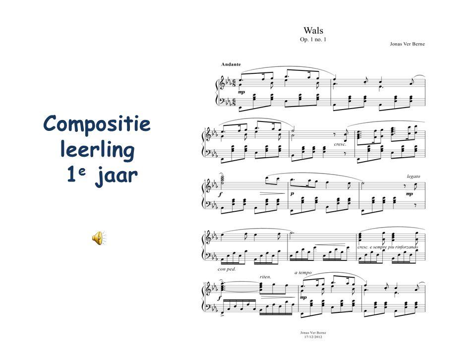 Compositie leerling 1 e jaar