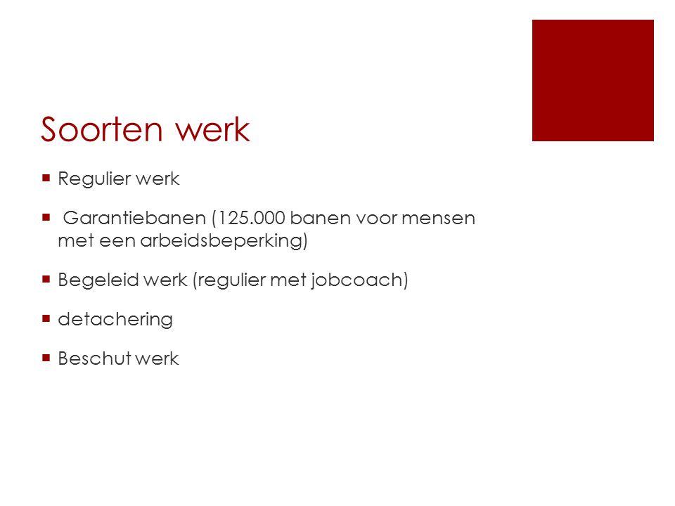 Soorten werk  Regulier werk  Garantiebanen (125.000 banen voor mensen met een arbeidsbeperking)  Begeleid werk (regulier met jobcoach)  detacherin
