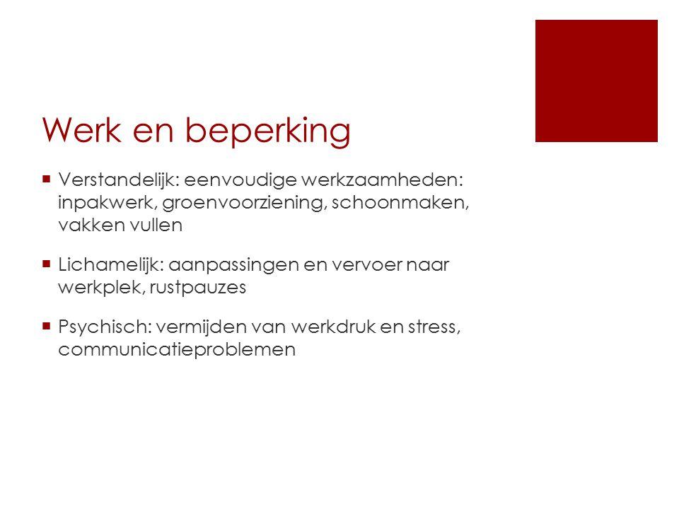 Werk en beperking  Verstandelijk: eenvoudige werkzaamheden: inpakwerk, groenvoorziening, schoonmaken, vakken vullen  Lichamelijk: aanpassingen en ve