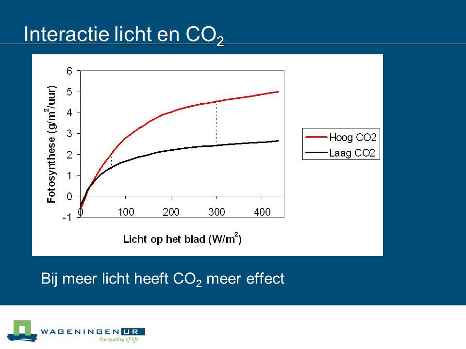Interactie licht en CO 2 Bij meer licht heeft CO 2 meer effect