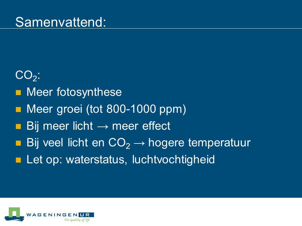 Samenvattend: CO 2 : Meer fotosynthese Meer groei (tot 800-1000 ppm) Bij meer licht → meer effect Bij veel licht en CO 2 → hogere temperatuur Let op: waterstatus, luchtvochtigheid