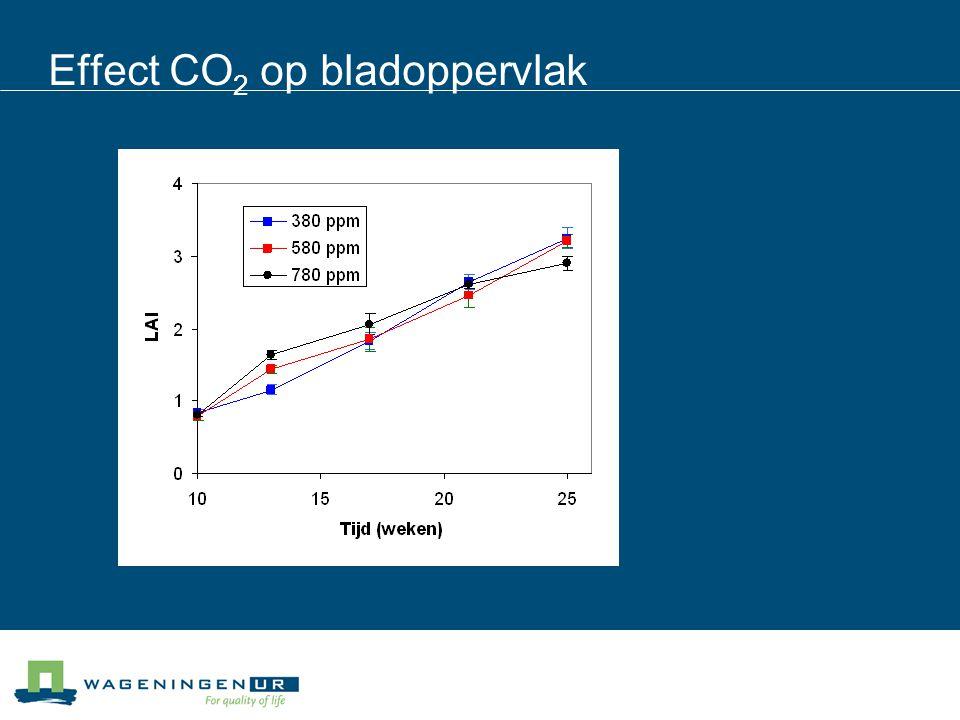 Effect CO 2 op bladoppervlak