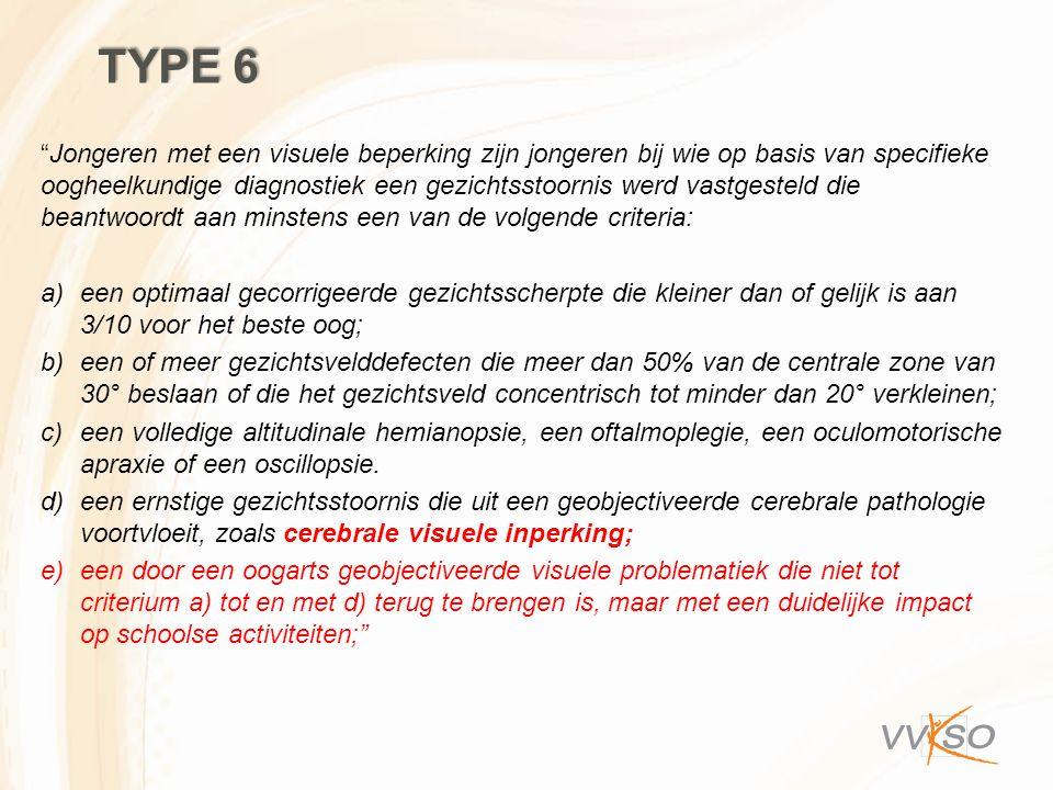 """TYPE 6 """"Jongeren met een visuele beperking zijn jongeren bij wie op basis van specifieke oogheelkundige diagnostiek een gezichtsstoornis werd vastgest"""