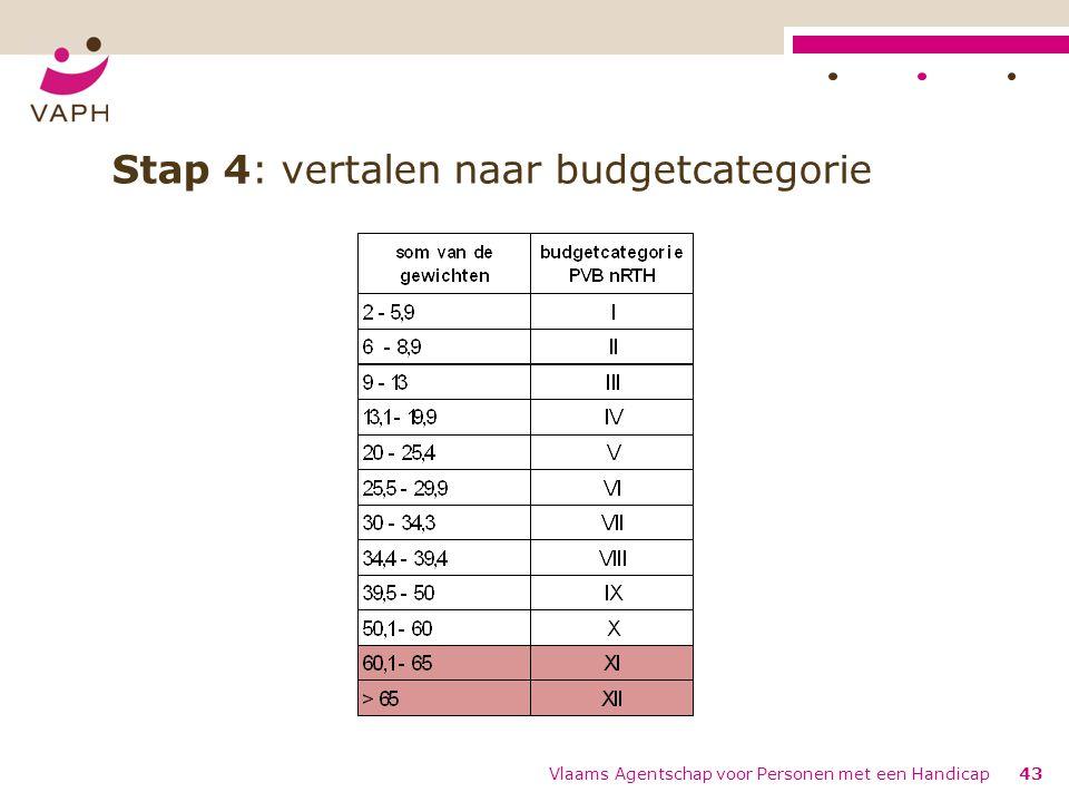 Stap 4: vertalen naar budgetcategorie Vlaams Agentschap voor Personen met een Handicap43