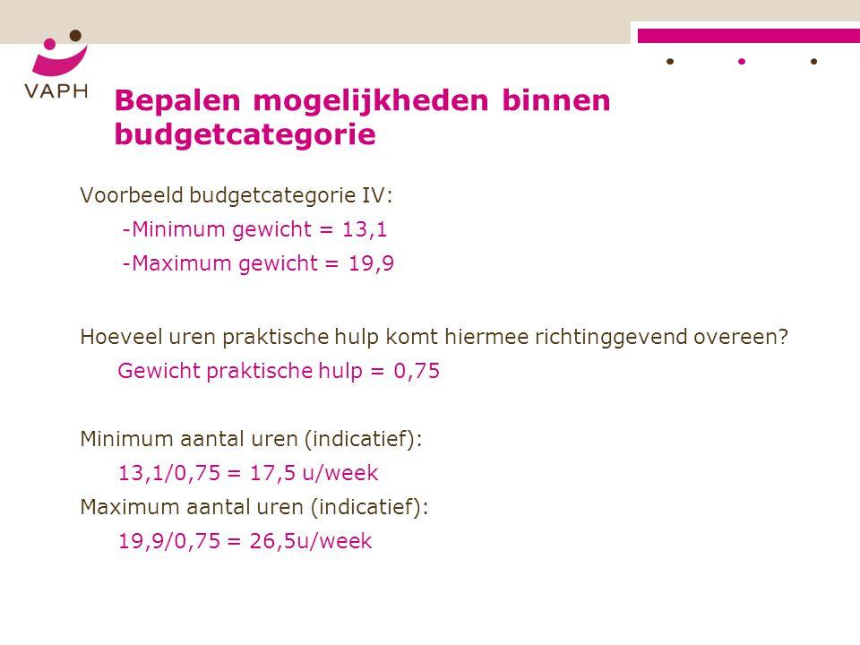 Bepalen mogelijkheden binnen budgetcategorie Voorbeeld budgetcategorie IV: -Minimum gewicht = 13,1 -Maximum gewicht = 19,9 Hoeveel uren praktische hul