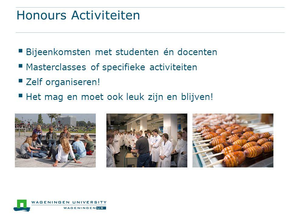 Honours Activiteiten  Bijeenkomsten met studenten én docenten  Masterclasses of specifieke activiteiten  Zelf organiseren.