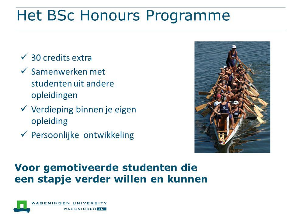 Overzicht van het programma BSc 1 BSc 2 BSc 3 Summer Orien- tatie vak Selectie Texel Honours Investigation Project Af- slui- ting Honours Community Individuele tutor Uitbreiding BSc thesis Honours Cards Selectie Honours Activiteiten