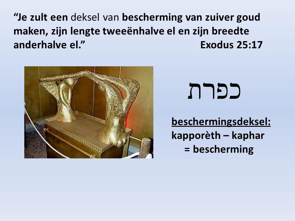 Je zult een deksel van bescherming van zuiver goud maken, zijn lengte tweeënhalve el en zijn breedte anderhalve el. Exodus 25:17 beschermingsdeksel: kapporèth – kaphar = bescherming כפרת