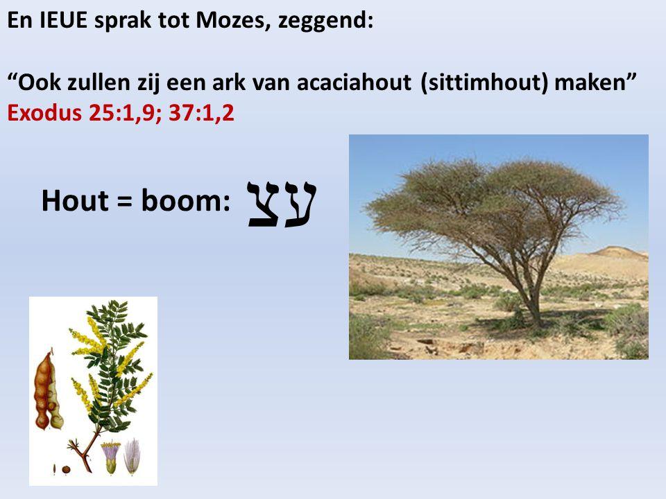 En IEUE sprak tot Mozes, zeggend: Ook zullen zij een ark van acaciahout (sittimhout) maken Exodus 25:1,9; 37:1,2 Hout = boom: עצ
