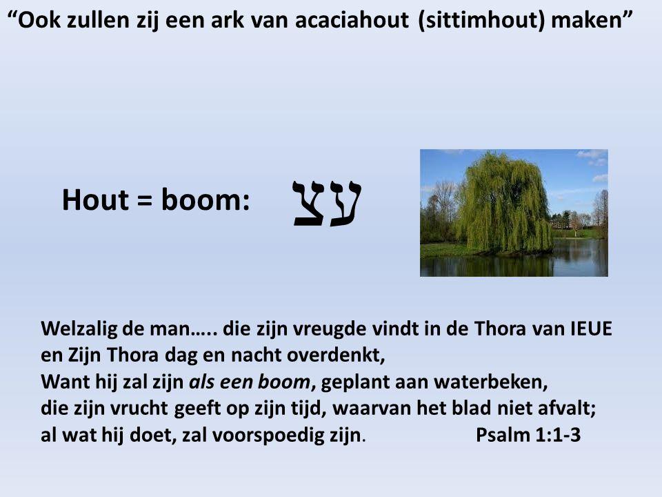 Ook zullen zij een ark van acaciahout (sittimhout) maken Hout = boom: עצ Welzalig de man…..