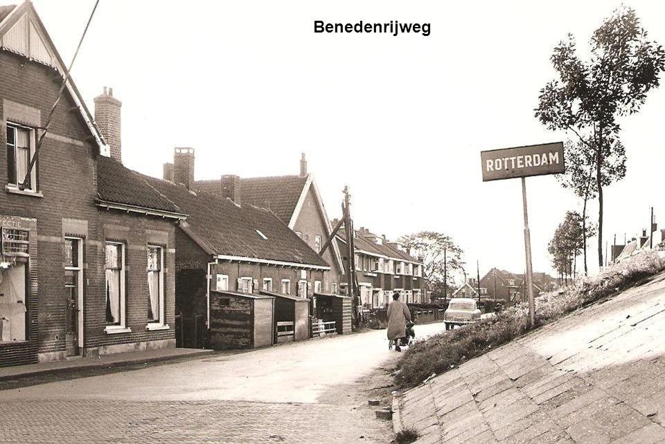 Hortensiastraat