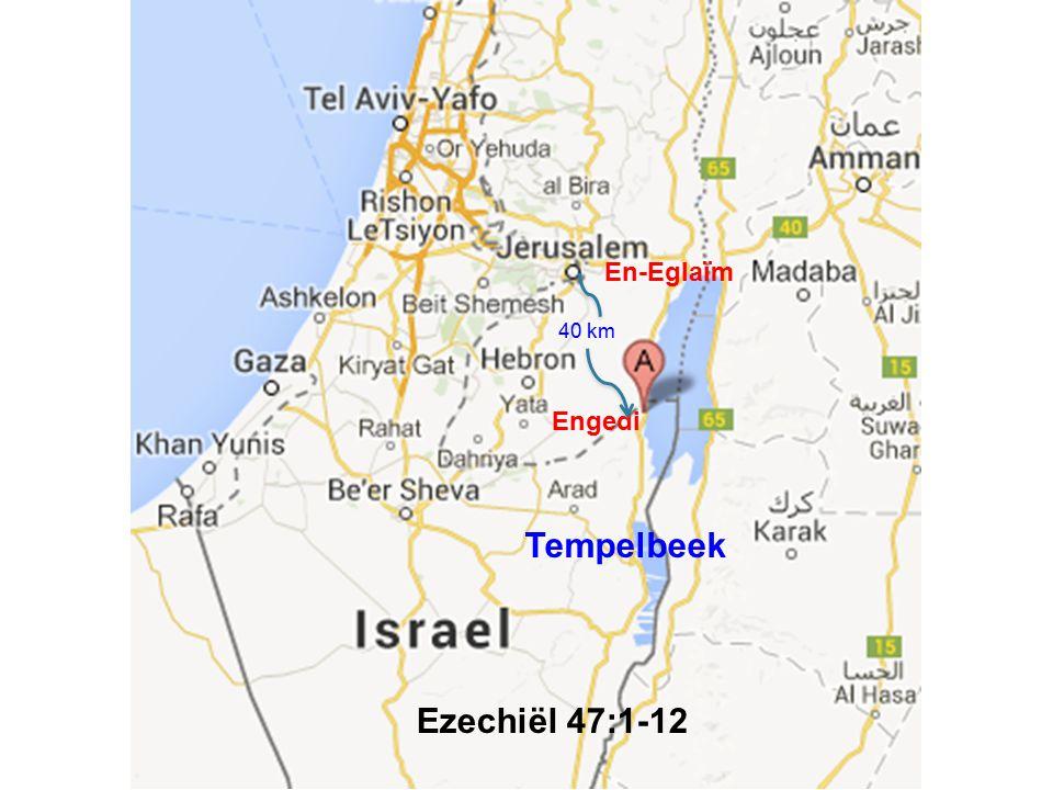 Engedi 40 km Tempelbeek En-Eglaïm Ezechiël 47:1-12