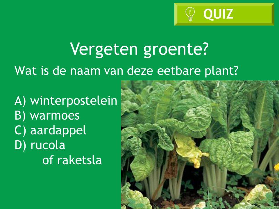 Vergeten groente.Wat is de naam van deze eetbare plant.