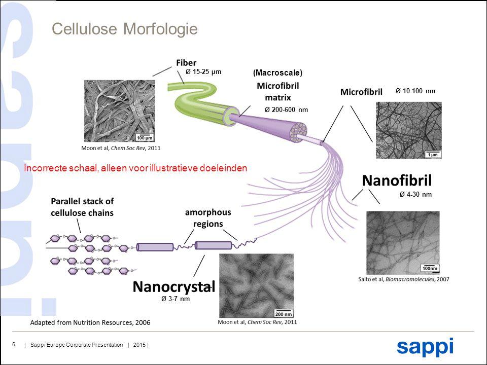 | Sappi Europe Corporate Presentation | 2015 | 6 Cellulose Morfologie Ø 15-25 µm Ø 200-600 nm Ø 10-100 nm Ø 4-30 nm Ø 3-7 nm (Macroscale) Incorrecte s