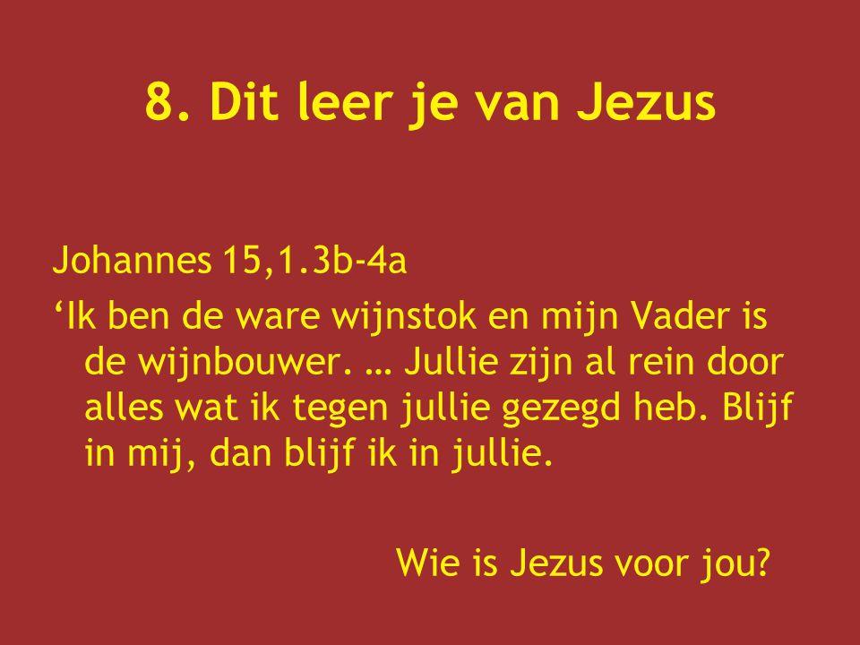 8. Dit leer je van Jezus Johannes 15,1.3b-4a 'Ik ben de ware wijnstok en mijn Vader is de wijnbouwer. … Jullie zijn al rein door alles wat ik tegen ju