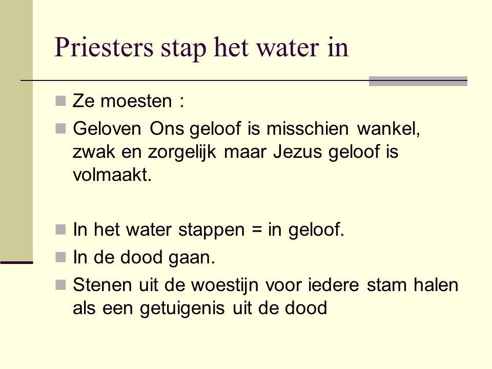 Priesters stap het water in Ze moesten : Geloven Ons geloof is misschien wankel, zwak en zorgelijk maar Jezus geloof is volmaakt. In het water stappen