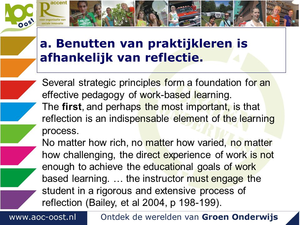 a. Benutten van praktijkleren is afhankelijk van reflectie. Several strategic principles form a foundation for an effective pedagogy of work-based lea
