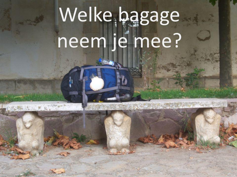 Welke bagage neem je mee?