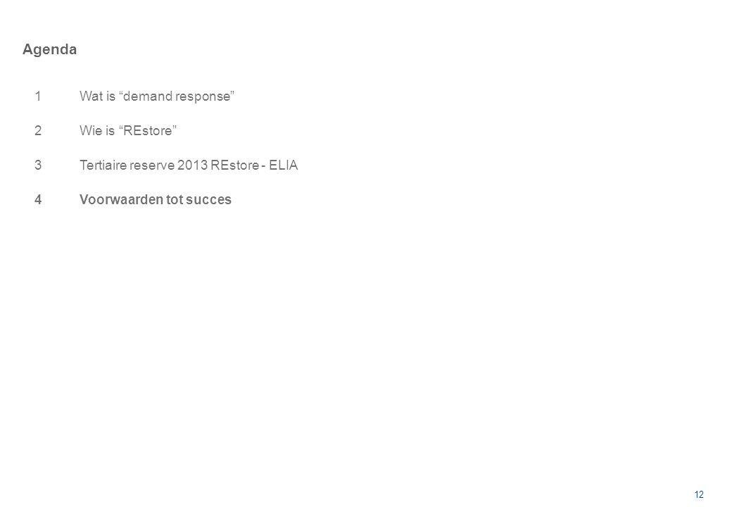 12 Agenda 1Wat is demand response 2Wie is REstore 3Tertiaire reserve 2013 REstore - ELIA 4Voorwaarden tot succes