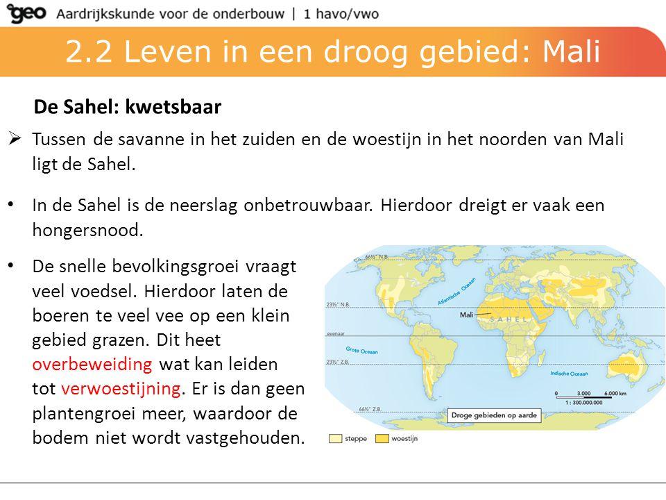 2.2 Leven in een droog gebied: Mali De Sahel: kwetsbaar  Tussen de savanne in het zuiden en de woestijn in het noorden van Mali ligt de Sahel. In de