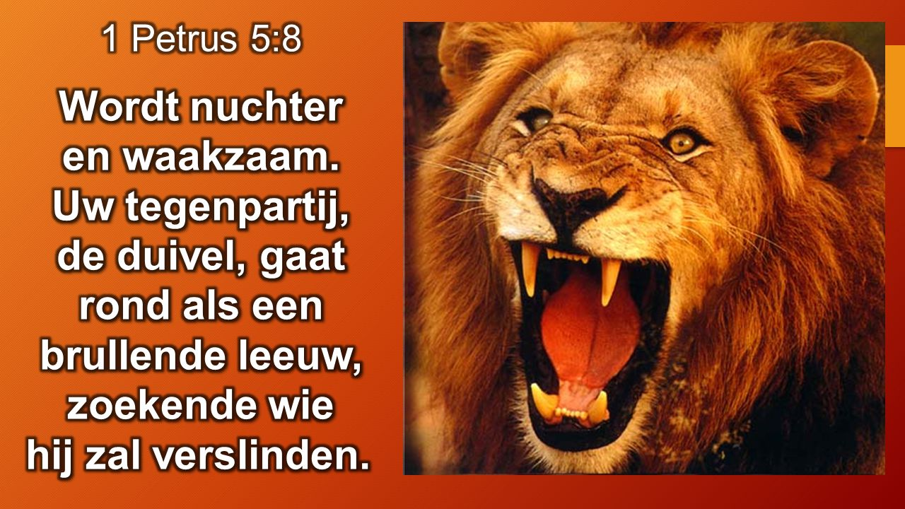 Job 2:7 Satan ging van des Heren aangezicht heen, en sloeg Job