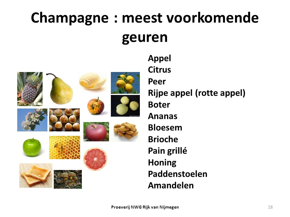 Champagne : meest voorkomende geuren Appel Citrus Peer Rijpe appel (rotte appel) Boter Ananas Bloesem Brioche Pain grillé Honing Paddenstoelen Amandel
