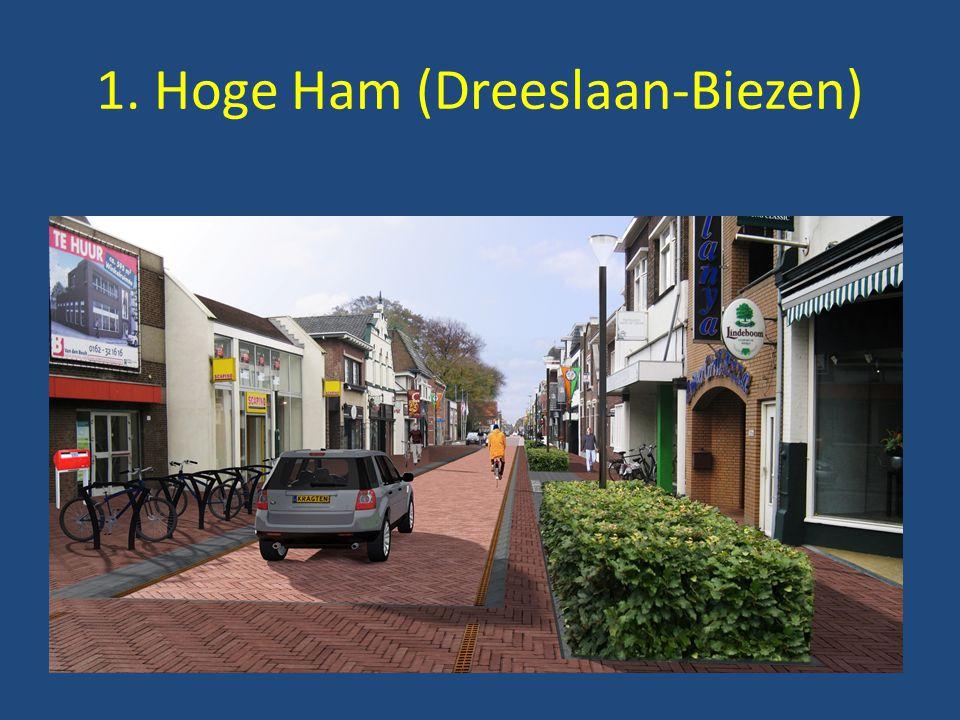 1. Hoge Ham (Dreeslaan-Biezen)