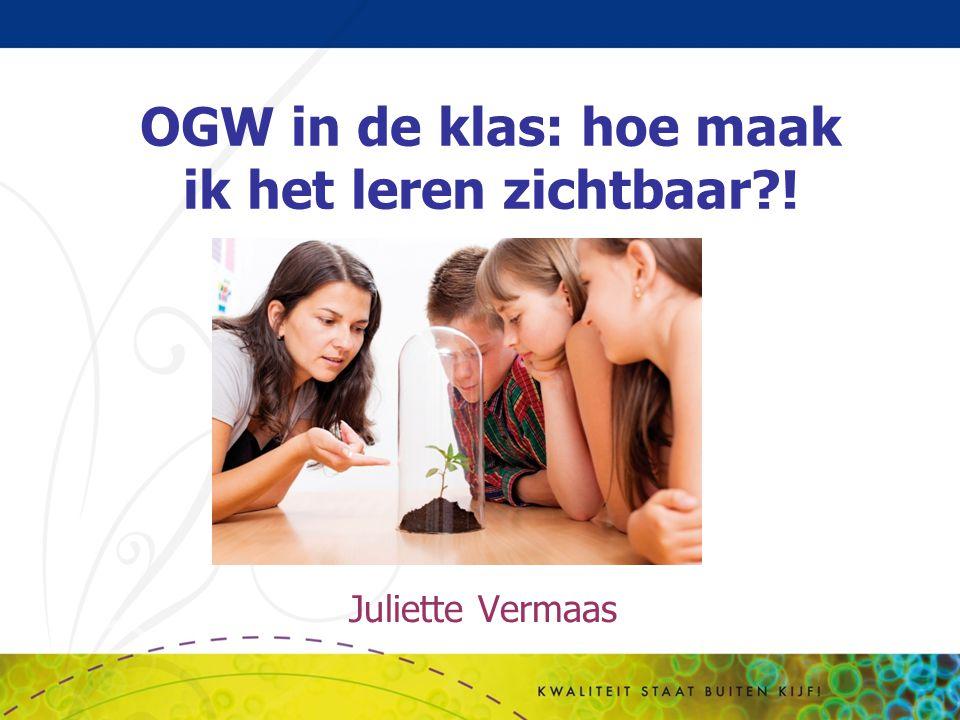 Juliette Vermaas OGW in de klas: hoe maak ik het leren zichtbaar?!