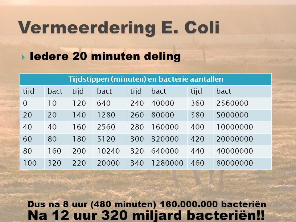 14  Iedere 20 minuten deling Tijdstippen (minuten) en bacterie aantallen tijdbacttijdbacttijdbacttijdbact 010120640240400003602560000 20 140128026080