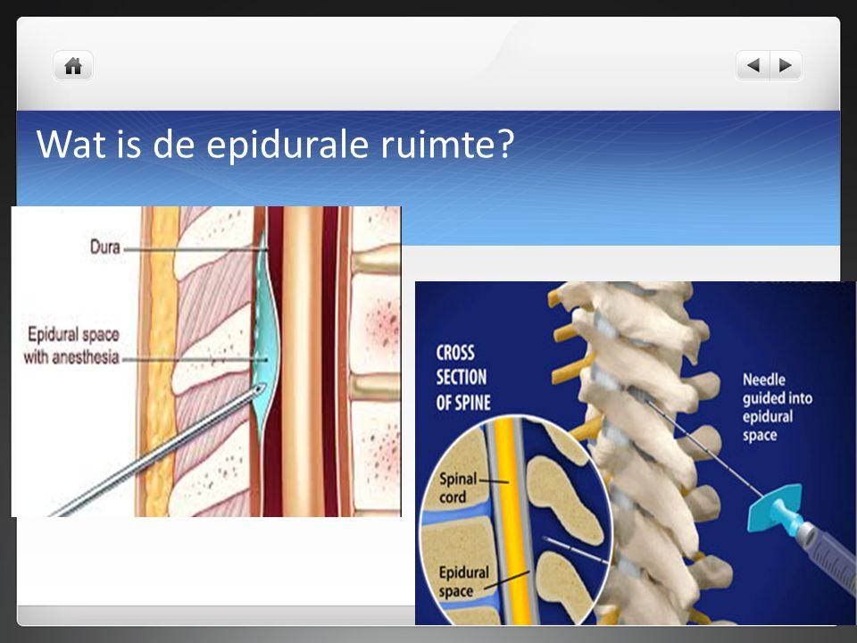 Wat is de epidurale ruimte?