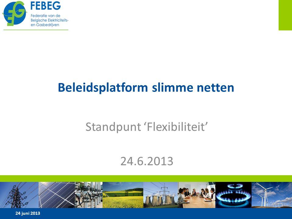 Beleidsplatform slimme netten Standpunt 'Flexibiliteit' 24.6.2013 24 juni 20131