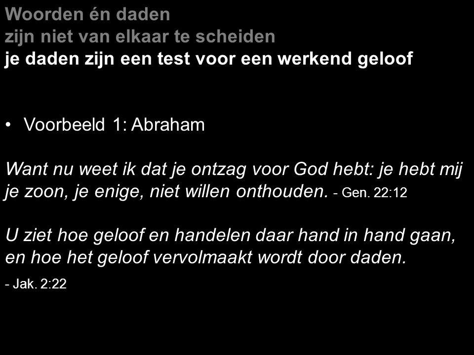 Woorden én daden zijn niet van elkaar te scheiden je daden zijn een test voor een werkend geloof Voorbeeld 1: Abraham Want nu weet ik dat je ontzag vo